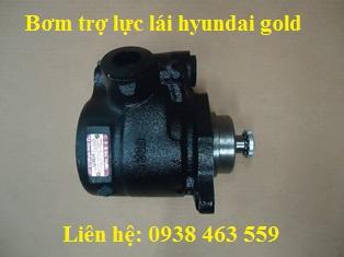 Bơm trợ lực lái hyundai gold